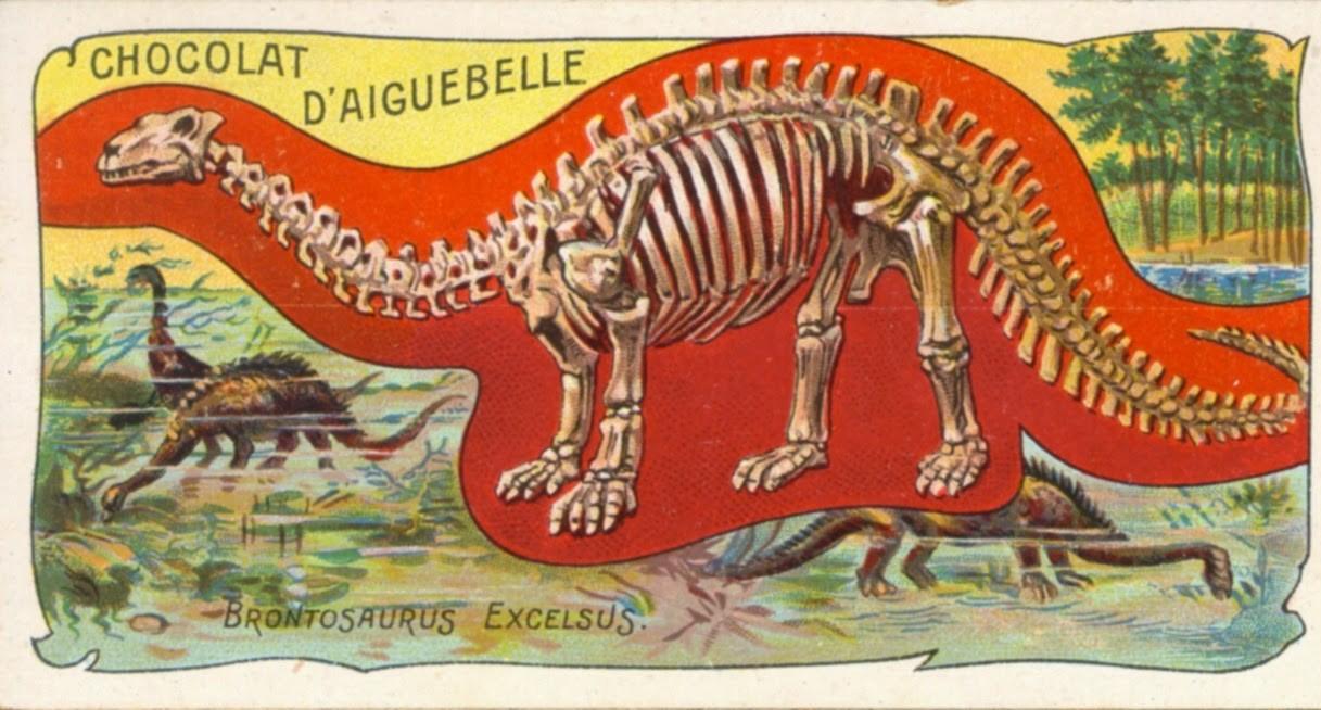 ブロントサウルス、本物の恐竜として復活へ | ナショナルジオ ...