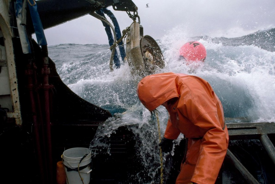 公海での漁業は「無益」、新たな研究を解説する   ナショナルジオ ...
