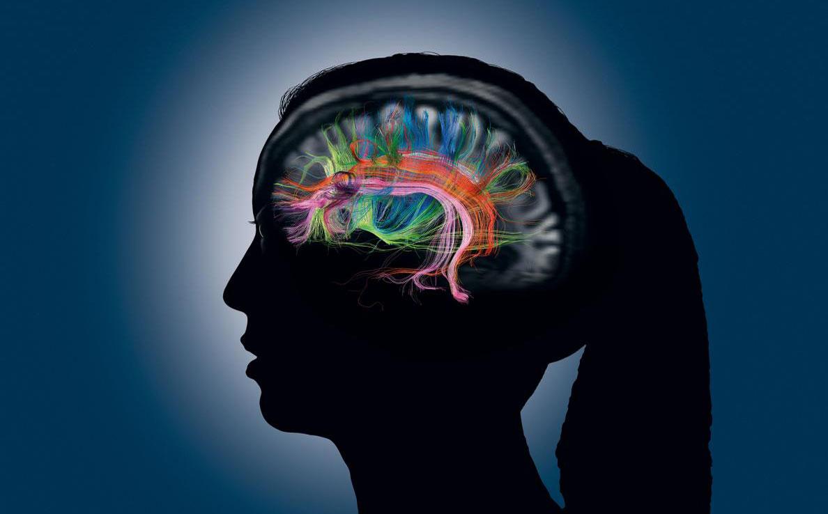 記憶とは何か―脳はどう覚え、保ち、失うのか | ナショナルジオ ...
