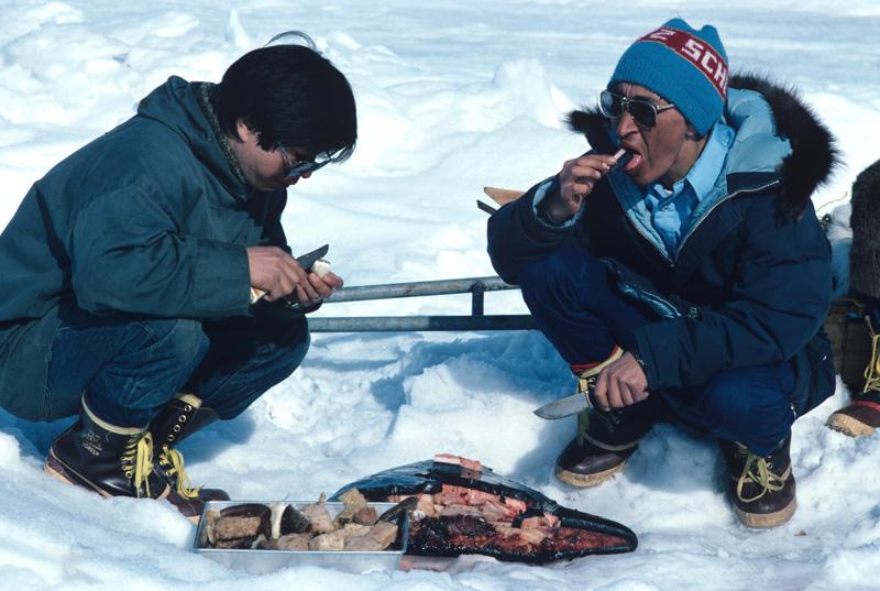 第3章 冒険家の食欲 後編 | ナショナルジオグラフィック日本版サイト