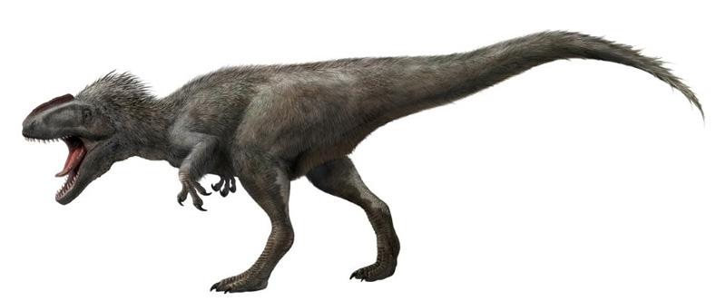 ティラノサウルス 羽毛