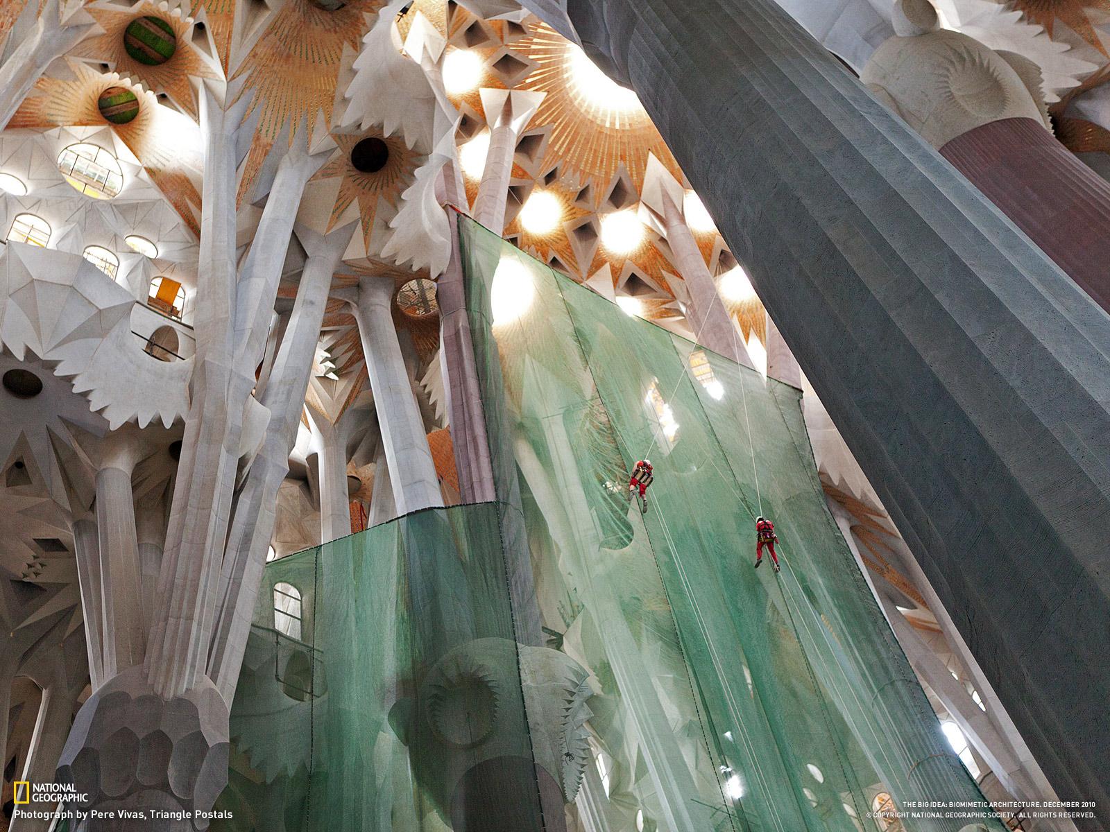 サグラダ ファミリアのアーチ形天井 スペイン バルセロナ