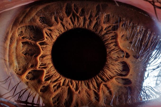 超拡大した「目」 | ナショナル...
