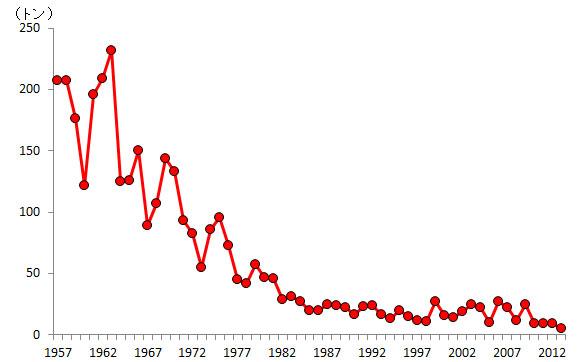 【経済】シラスウナギ(絶滅危惧種ニホンウナギの稚魚)が大不漁の恐れ 前年同期のわずか1% 値上がり必至、取引規制も YouTube動画>5本 ->画像>27枚