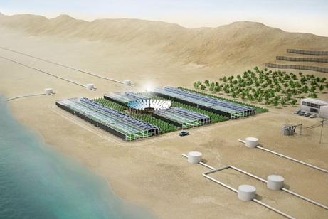 砂漠緑化計画:エネルギーのオア...