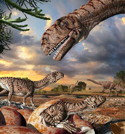 集団営巣、南アで最古の恐竜の巣   ナショナルジオグラフィック日本版 ...