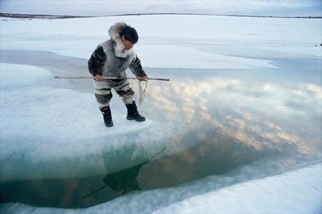 イヌイット、気候変動で感染症が...