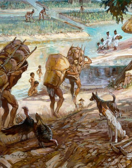 理由 滅亡 マヤ 文明