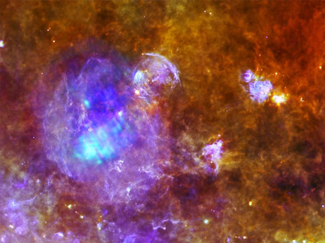 わし座の超新星残骸W44 | ナショ...
