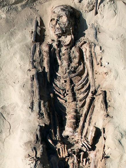 古代エジプト、人骨が語る過酷な...