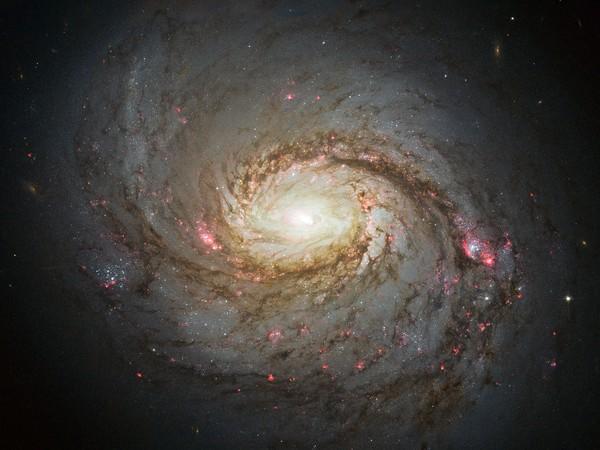 渦巻銀河M77、ハッブル撮影 | ナショナルジオグラフィック日本版サイト
