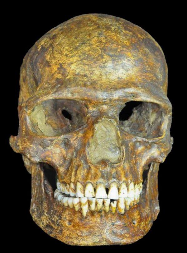 欧州人の遺伝子、形成は旧石器時代か | ナショナルジオグラフィック ...