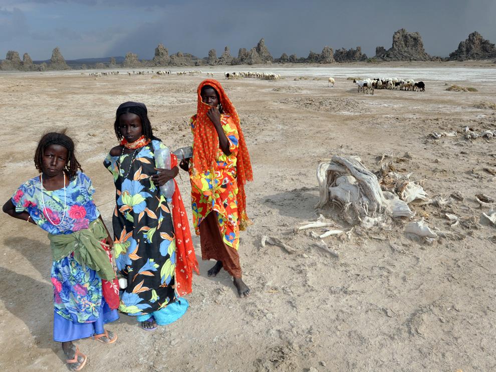 Goat Herders, Djiboutiナショナルジオグラフィック日本版サイト