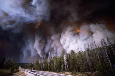 山火事、地球の巨大エネルギーナショナルジオグラフィック日本版サイト