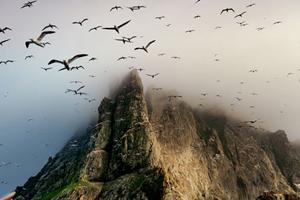 特集:英国ヘブリディーズ諸島 2...