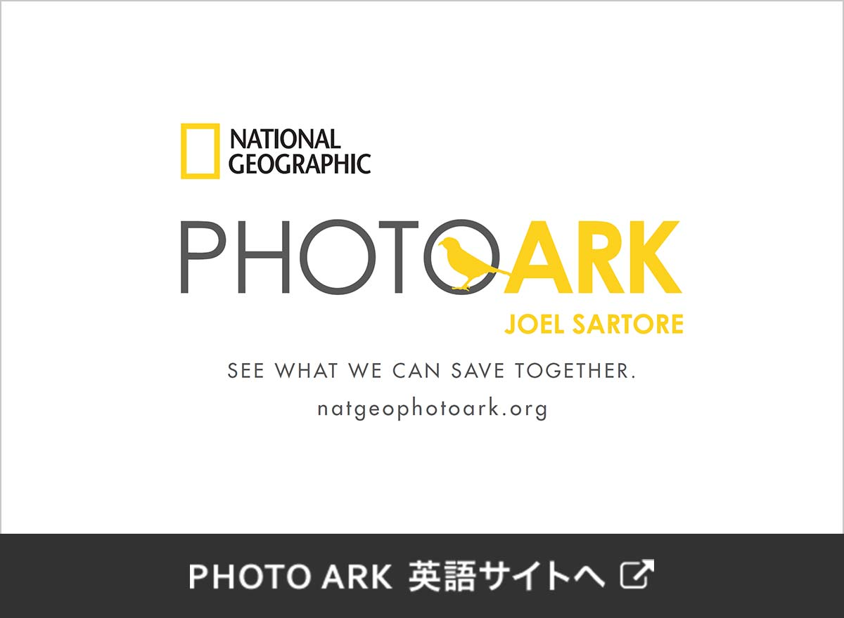 National Geographic PHOTO ARK 英語サイトへ