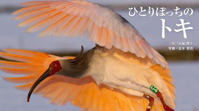 フォンニャ=ケバン国立公園の画像 p1_5