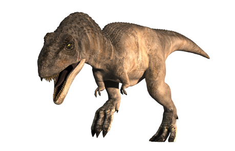 ティラノサウルスの画像 p1_6