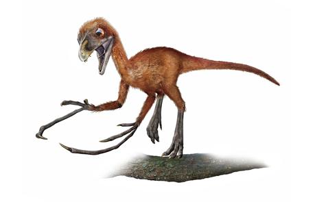 恐竜の壁紙 ナショナル ...