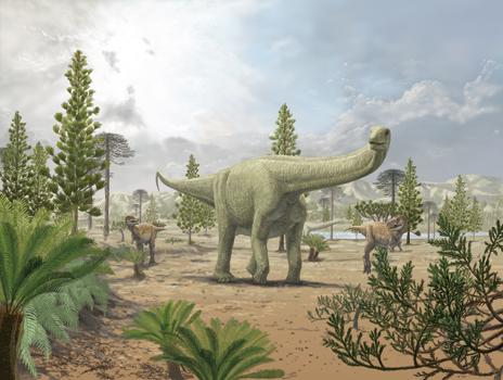 恐竜・古生物・古人類 記事一覧へ